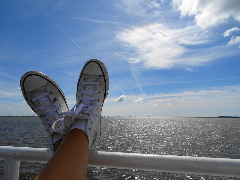 Eiderfahrt-mit Seetierfang-auf-der-Adler-2-Entspannung
