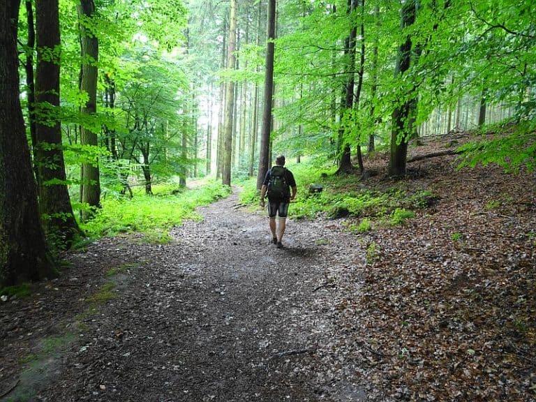 entspannt-wandern-in-schleswig-holstein
