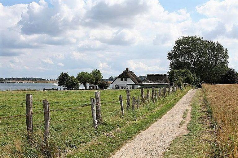 wandern-in-schleswig-holstein-wanderpfad-am-schleiufer